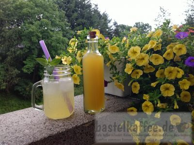 Southern Switchel Summer Drink